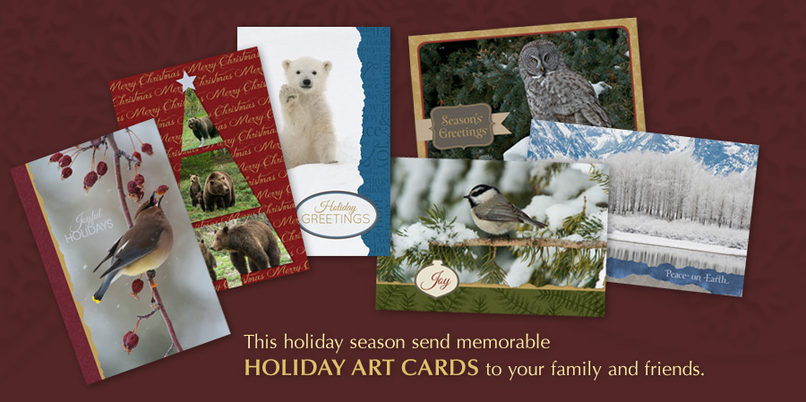 Holiday Art Cards are Here!