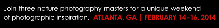 Join the Masters of Nature Photography Seminar in Atlanta, Georgia