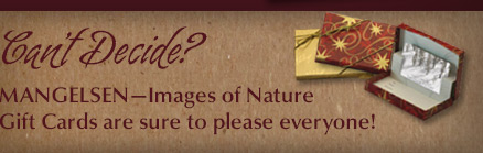Mangelsen Images of Nature Gallery Gift Card