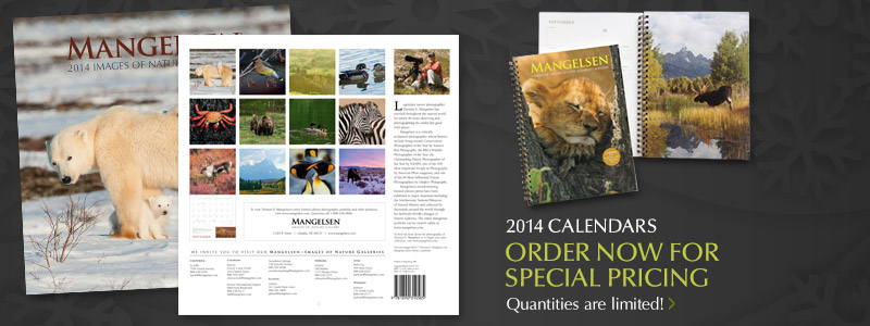 Special pricing now available on 2014 Calendars