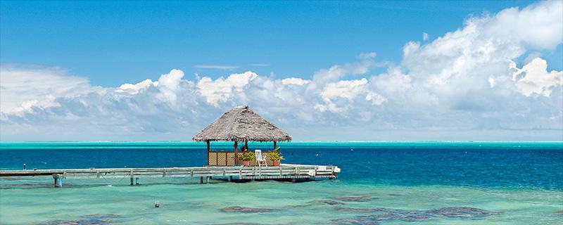 Mangelsen photo titled Polynesian Dream