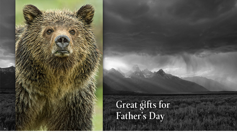 Great gifts for Father's Day