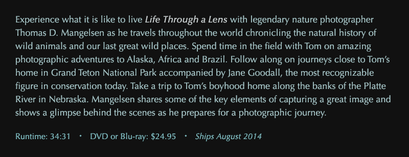 Own Life Through a Lens on DVD or Blu-ray