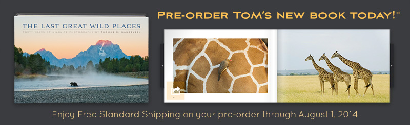 Pre-order Tom's new book and receive free shipping