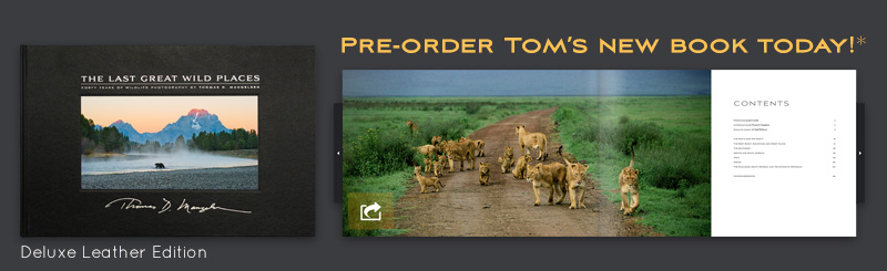 Pre-order Tom's new book for September 2014 delivery