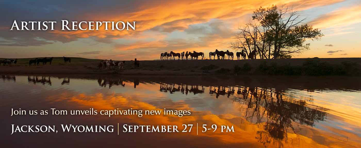 Artist Reception in Jackson, Wyoming