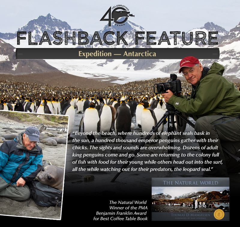 Flashback: Expedition - Antarctica