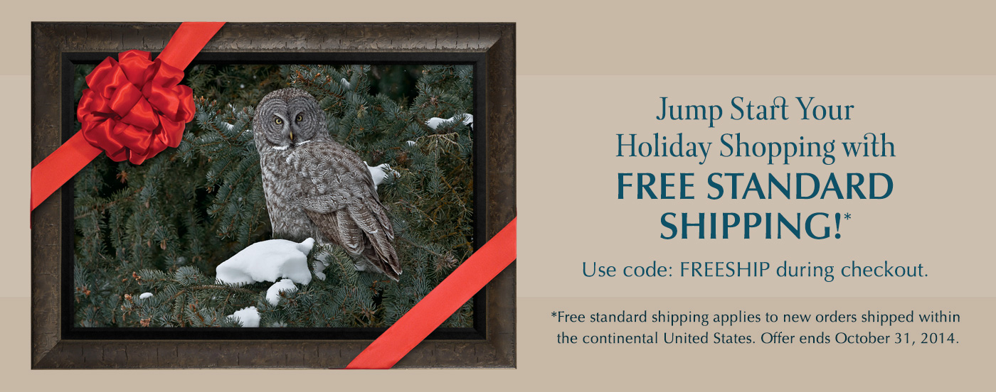 Free Standard Shipping until October 31, 2014