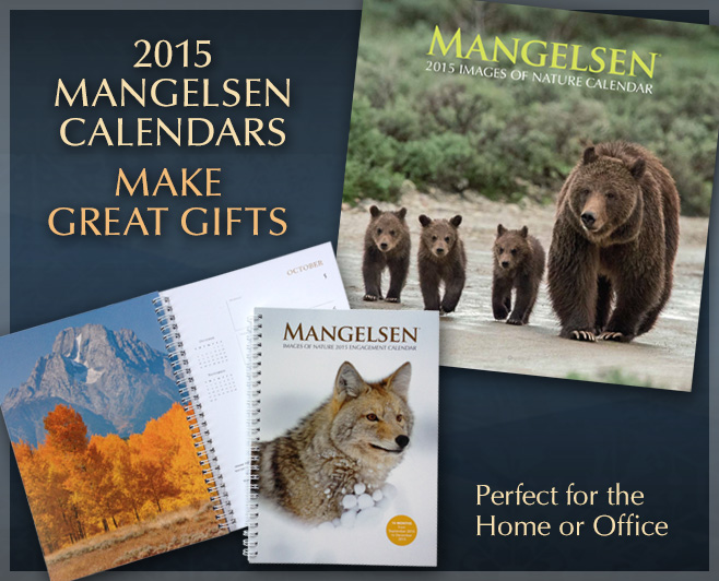 Mangelsen Calendars Make Great Gifts