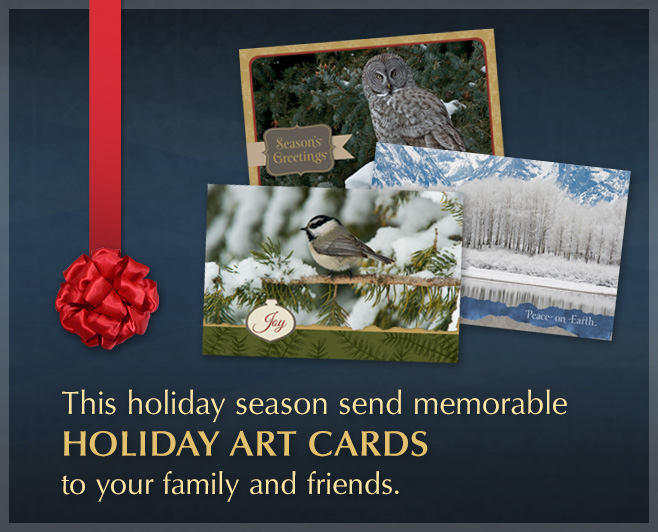 Keep in touch with loved ones, send Mangelsen Holiday Art Cards