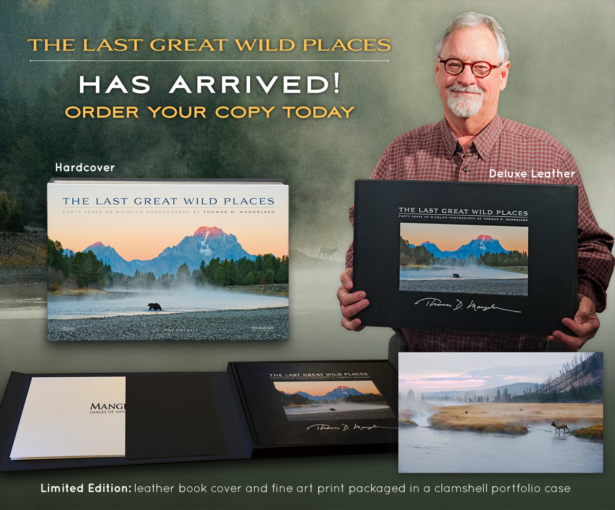 Order Tom's new book and bring a little wildness into your home!