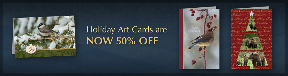 50% off Holiday Art Cards