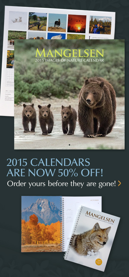 Get your Mangelsen Calendar before they are gone!