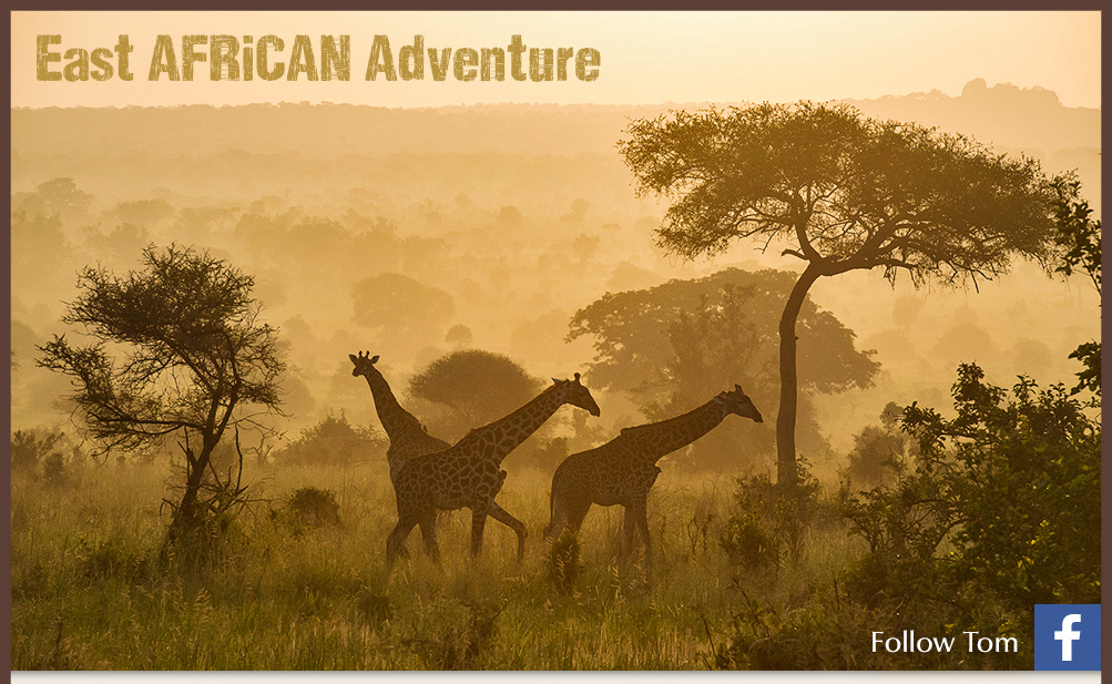 East Africa adventures with Tom Mangeslen