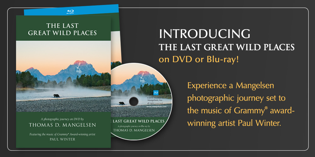 Introducing The Last Great WIld Places DVD/Blu-Ray