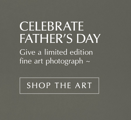 Shop THE ART for Father's Day gifts
