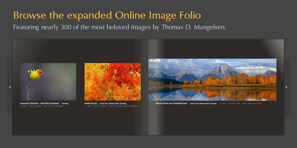 Browse Mangelsen's expanded Online Folio!