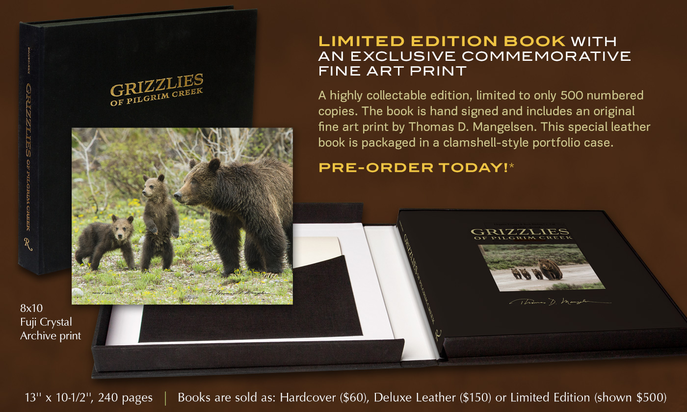 Pre-Order Grizzlies of Pilgrim Creek Limited Edition book with Commemorative Fine Art Print