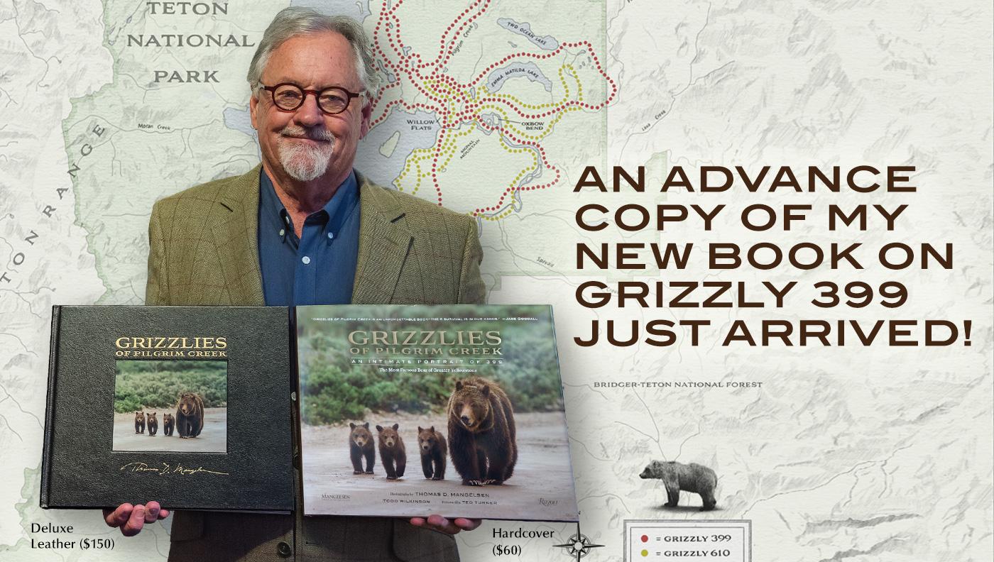 Mangelsen presents his new book Grizzlies of Pilgrim Creek