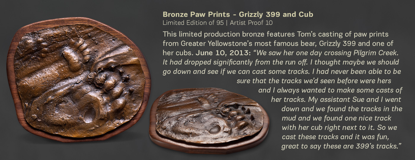 Limited Edition Bronze Paw Prints - Grizzly 399 and Cub