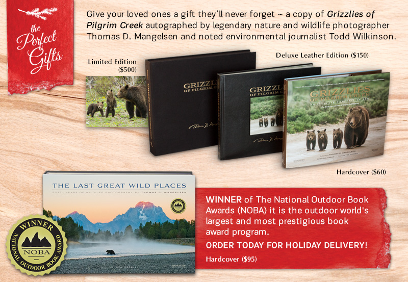 The Last Great WIld Places book is the winner of the National Outdoor Book Awards!