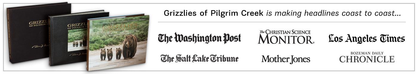 Grizzlies of Pilgrim Creek is making headlines coast to coast!