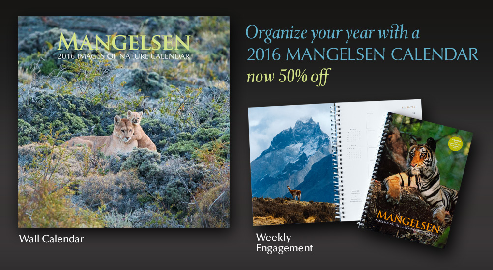 Get your Mangelsen calendars to help keep your year organized.