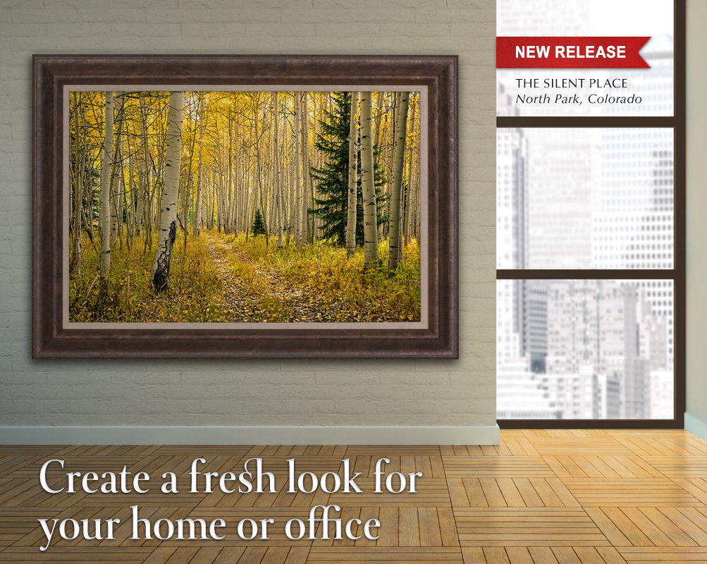 Create a fresh look for your home or office with a new Mangelsen limited edition image.