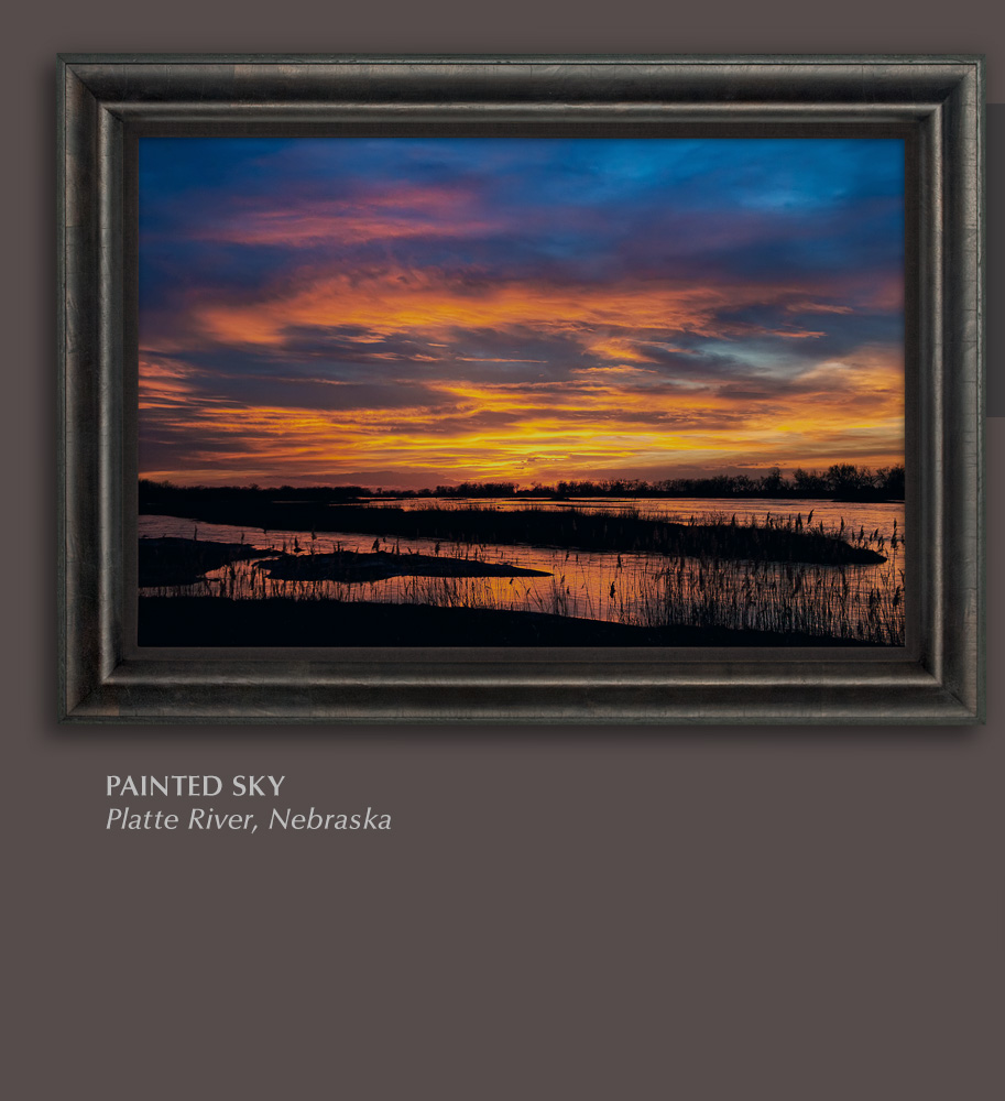 Mangelsen's limited edition print titled Painted Sky