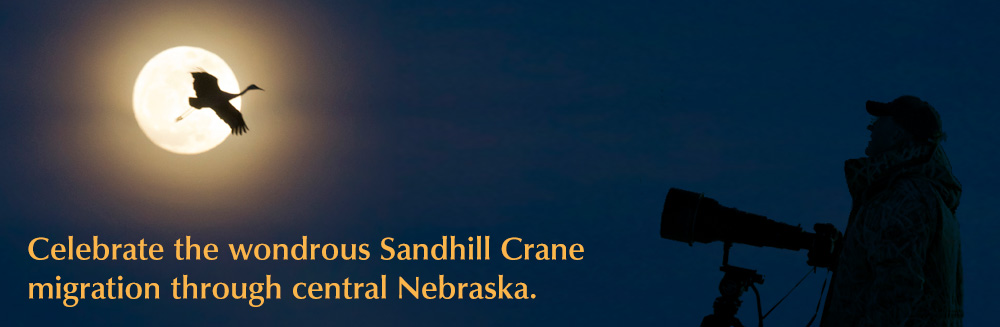 Celebrate the wondrous Sandhill Crane migration through central Nebraska