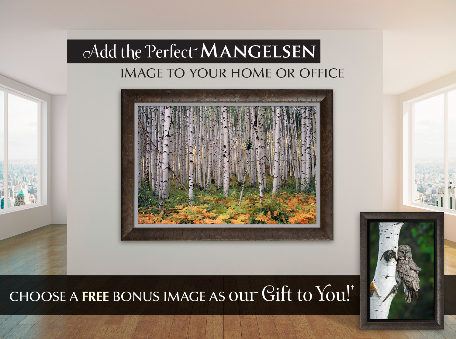 Limited edition photograph titled High Country Aspens. Display option shown: Framed Print