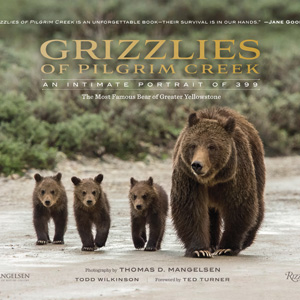 Grizzlies of Pilgrim Creek book