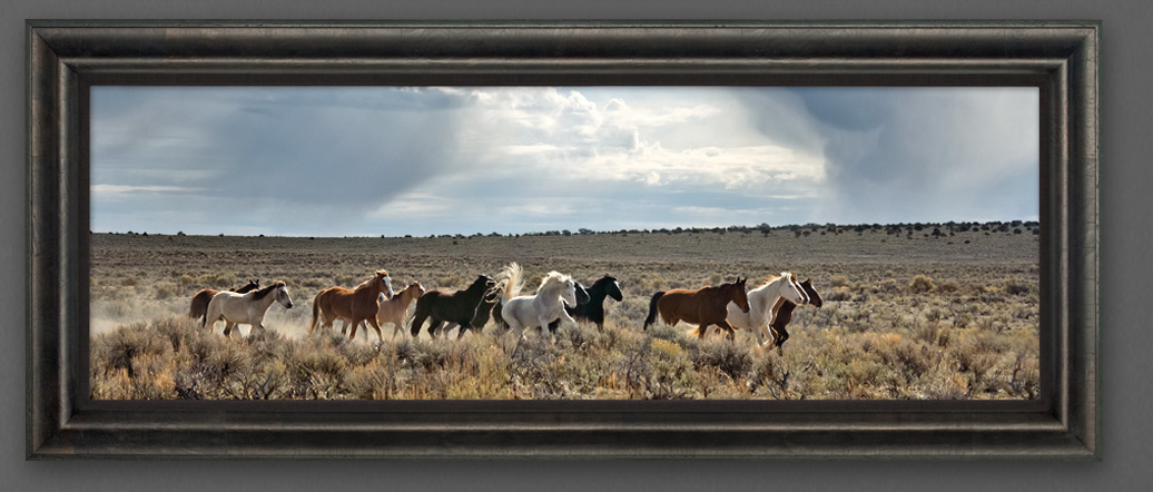Limited edition print titled Wild Thunder