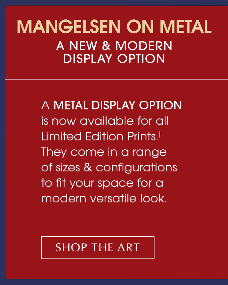More information about our new Metal Print Display Option
