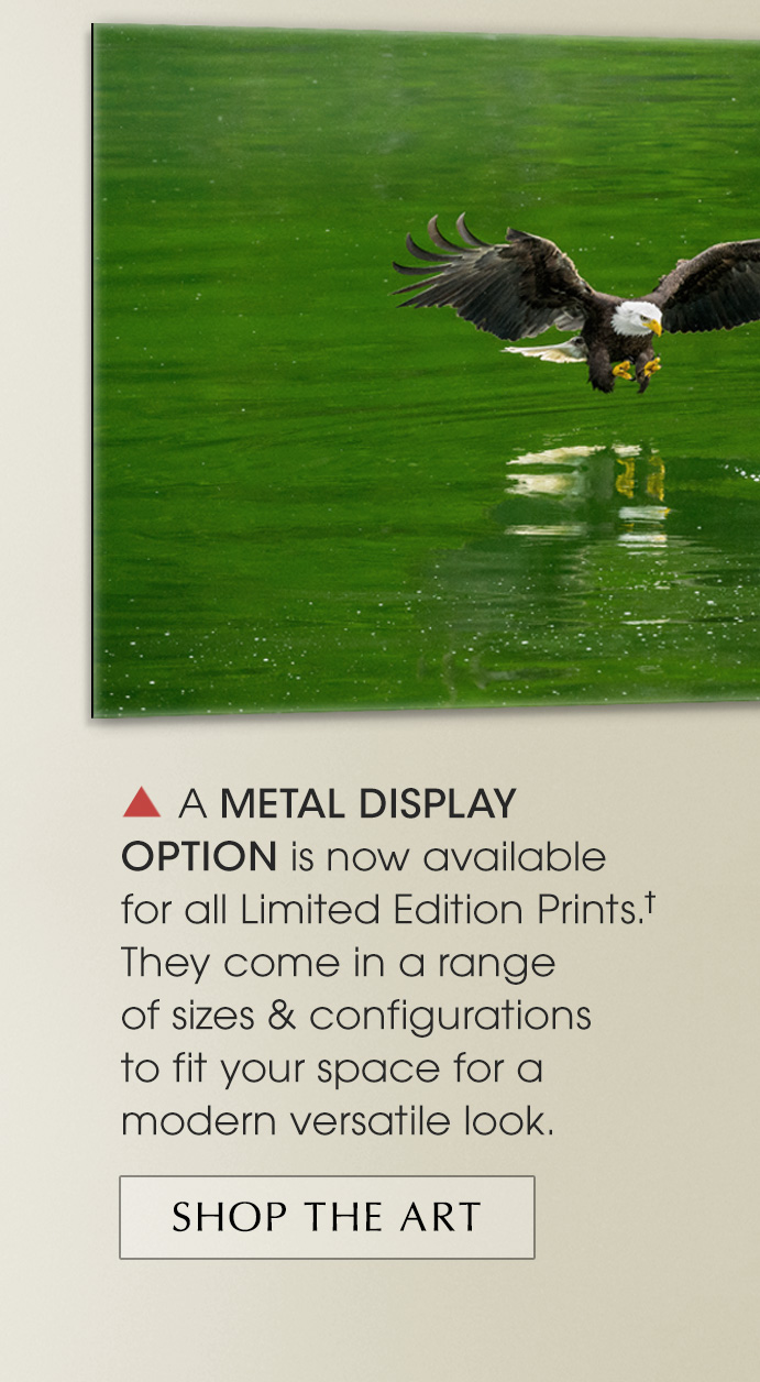 New Limited Edition print titled Emerald Waters