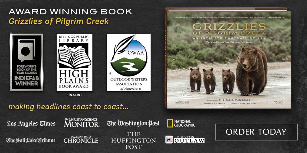 Award winning book Grizzlies of Pilgrim Creek