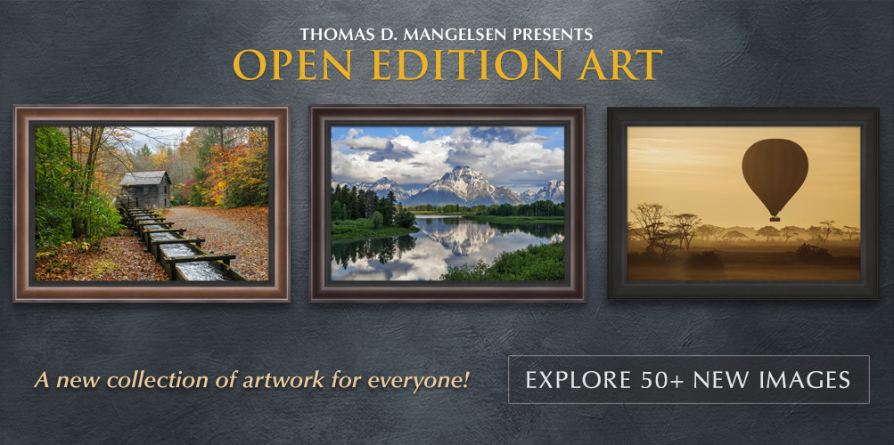 Thomas D. Mangelsen presents Open Edition Art