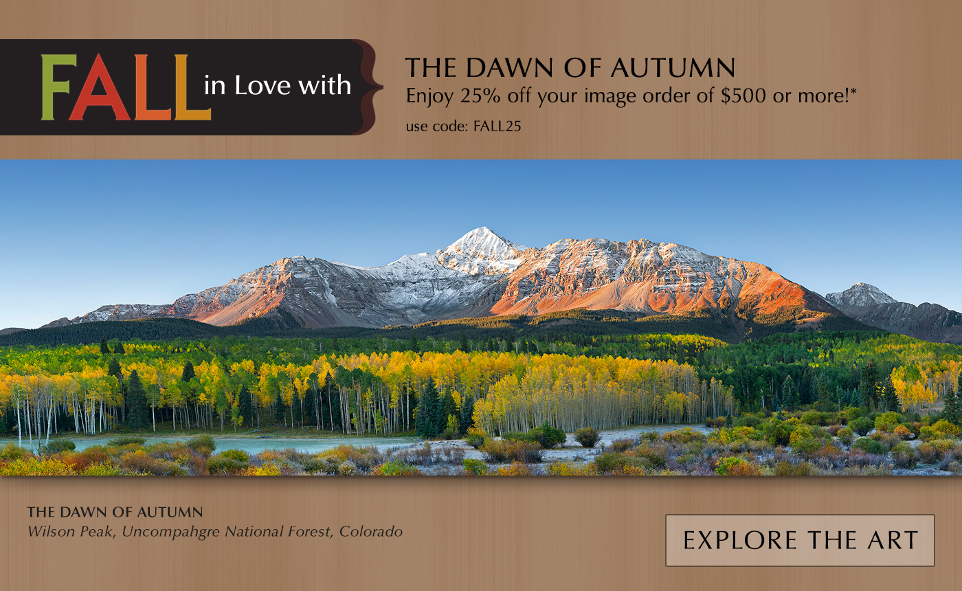 FALL in Love with the Dawn of Autumn