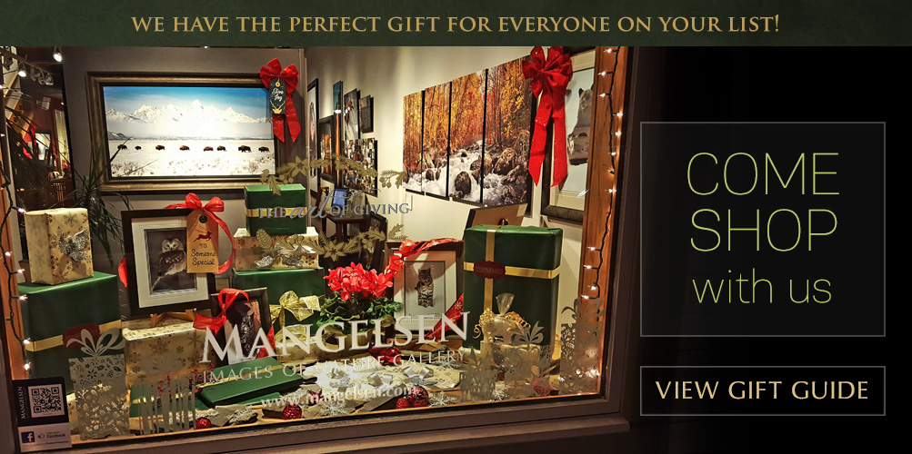 Come shop with us! We have the perfect gift for everyone on your list.