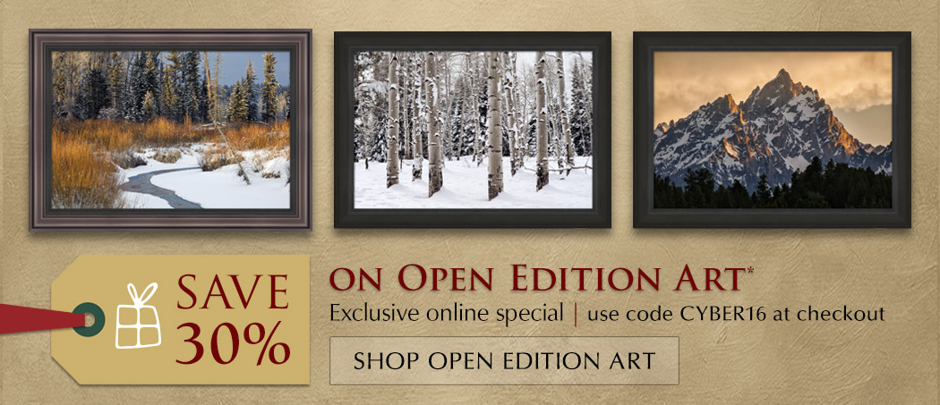 Save 30% on Open Edition Art