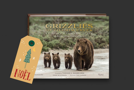 Choose Award-winning book titled Grizzlies of Pilgram Creek as a Free Gift* with a Limited Edition Print purchase