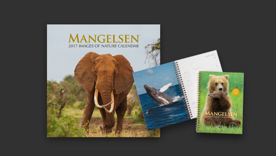 Stay organized with Mangelsen Images of Nature Calendars
