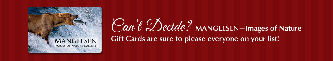 Can't decide? A Mangelsen gift card are sure to please everyone on your list!
