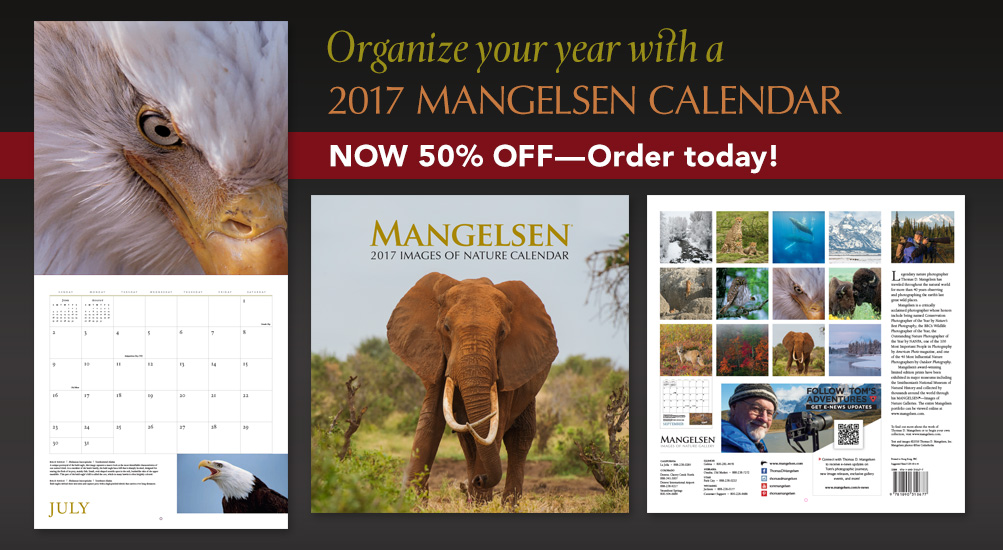 Stay organized with a MANGELSEN Calendar.