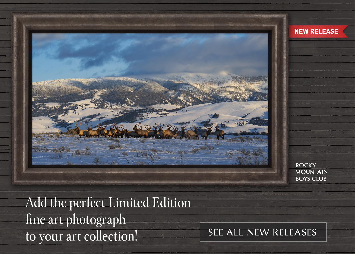 Add some new art to your home or office. Enjoy 25% off fine art photography!