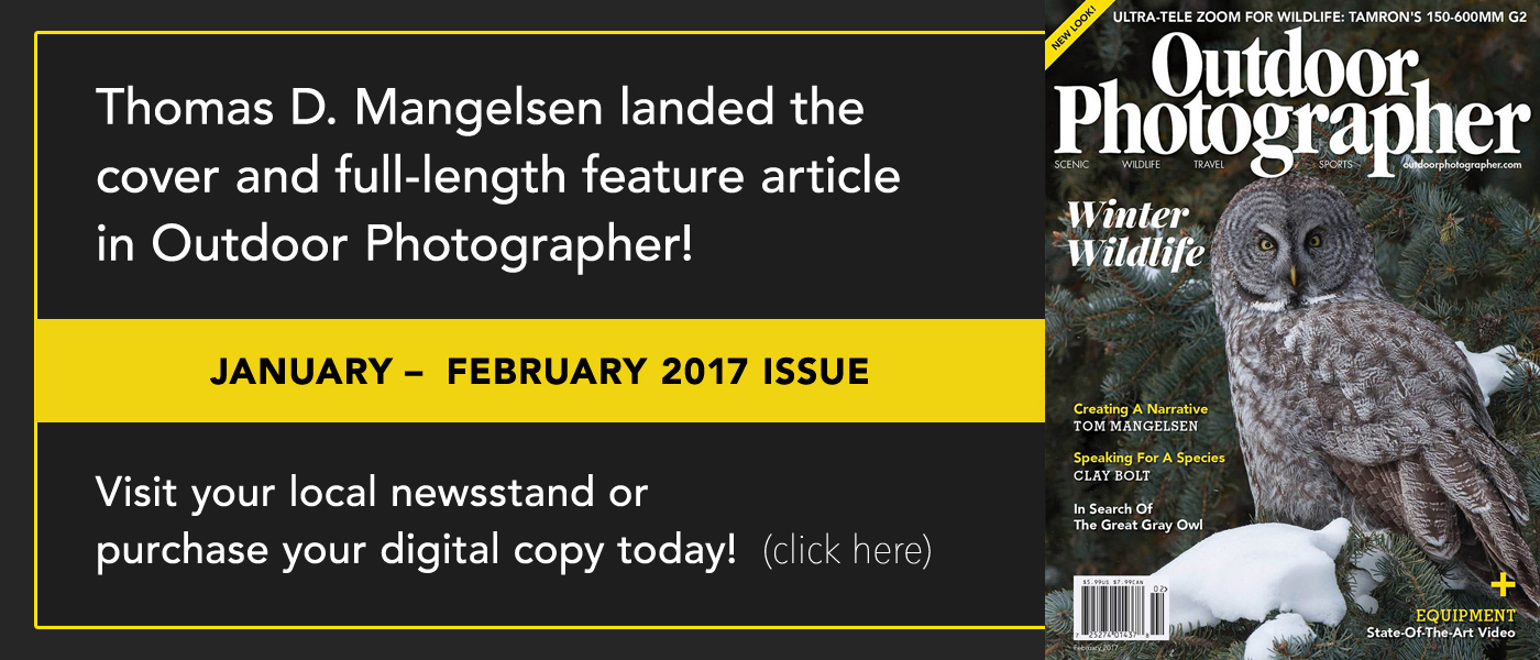 Mangelsen landed the cover story in Outdoor Photographer