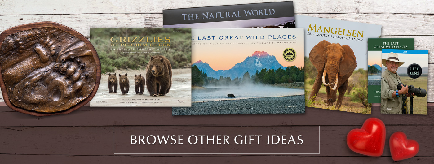 Gifts such as award-winning books, DVD/Blu-rays, Art Cards, and more are available in galleries and online