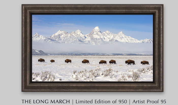 Limited Edition titled The Long March