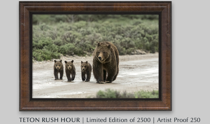 Limited Edition titled Teton Rush Hour