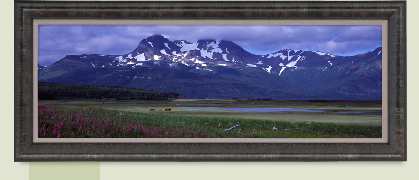 Limited Edition titled Glacier Travellers - Brown Bears